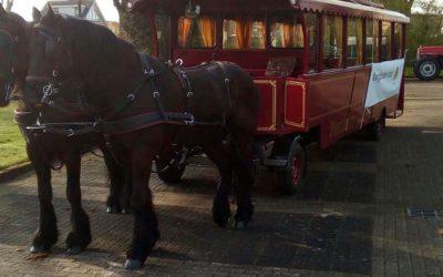 Rondritten paardentram